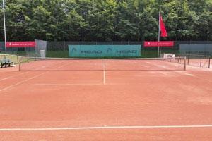 Bericht des Sportwartes: